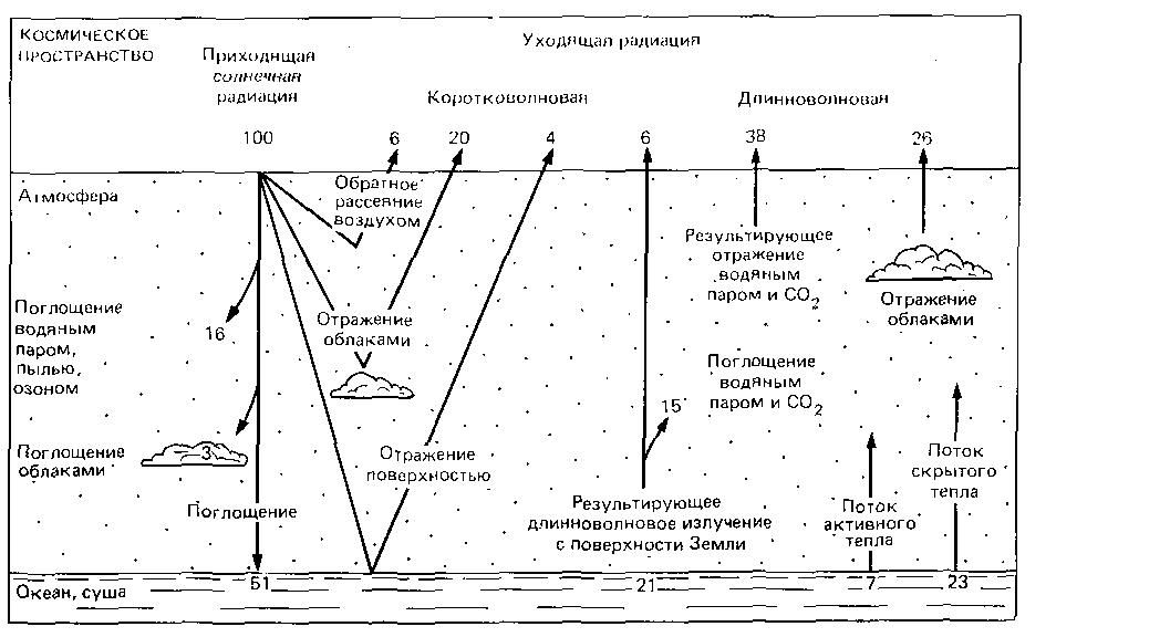 Иллюстрация 17